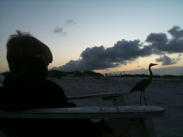 watching the sun rise on the beach